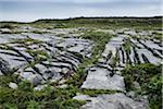 Rocky, limestone landscape, Aran Islands, Republic of Ireland