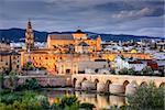 Cordoba, Spain at the Roman Bridge and Town Skyline on the Guadalquivir River.
