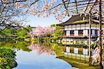 Kyoto, Japan at Heian Shrine's pond in the spring season.
