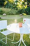 Outdoor chairs in garden