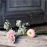Wildflowers on doorstep