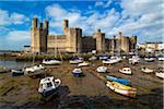 Boats on shore at low tide on River Seiont and Caernarfon Castle, Caernarfon, Gwynedd, Wales, United Kingdom