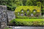 Tu Hwnt i'r Bont and Pont Fawr, Llanrwst, Conwy, Wales, United Kingdom