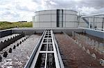 France, Seine-et-Marne, 77,Soignolles en Brie, Butte Belot,storage center of ultimate waste (STA company)