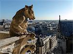 France, Paris, Notre-Dame's gargoyles