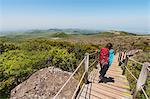 Rear view of woman hiking down wooden steps, Jeju Island, South Korea