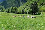 Five mature hikers lying in meadow taking a break