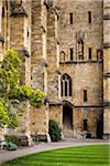 New College, Oxford University, Oxford, Oxfordshire, England, United Kingdom