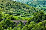 Gendun Viaduct, Ballymena, County Antrim, Northern Ireland, United Kingdom