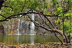 Waterfall, Cedar Creek Falls, Palm Grove, between Proserpine and Airlie Beach, Queensland, Australia