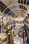 National Museum of Ireland - Archaeology, Dublin, Leinster, Ireland