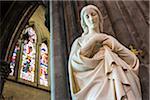 Statue of the Virgin Mary, interior of St Mary's Cathedral, Kilkenny, County Kilkenny, Ireland
