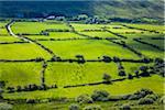 Scenic overview of farmland near Dingle, County Kerry, Ireland