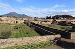 Elevated view to Mount Vesuvius, over Garden of the Fugitives, Roman ruins of Pompeii, UNESCO World Heritage Site, Campania, Italy, Europe
