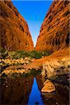 Walpa Gorge, the Olgas (Kata Tjuta), Uluru-Kata Tjuta National Park, Northern Territory, Australia