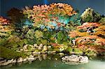 Night illuminations of temple gardens, Shoren-in temple, Southern Higashiyama, Kyoto, Japan, Asia