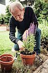Senior man planting flower pot at yard