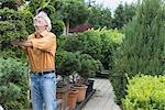 Mature man examining a hedge plant in plant nursery, Augsburg, Bavaria, Germany