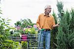 Mature man choosing plant from plant nursery, Augsburg, Bavaria, Germany