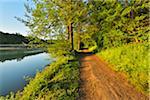 Path by River in Morning in Spring, Niedernberg, Miltenberg District, Churfranken, Franconia, Bavaria, Germany