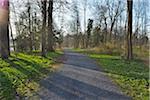 Gravel Path through Park in Early Spring, Kleinheubach, Churfranken, Spessart, Bavaria, Germany