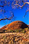 Walpa Gorge, Olgas, Uluru-Kata Tjuta National Park, Northern Territory, Australia