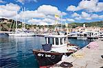 Harbour with fishing boats, Porto Azzuro, Island of Elba, Livorno Province, Tuscany, Italy, Mediterranean, Europe