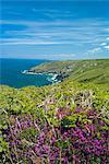 Coast near St. Ives, Cornwall, England, United Kingdom, Europe