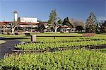 Government Gardens, Rotorua, Bay of Plenty, North Island, New Zealand, Pacific