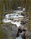 Nigel Creek, Banff National Park UNESCO World Heritage Site, Rocky Mountains, Alberta, Canada, North America