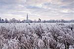 Salisbury Cathedral at dawn in winter, Salisbury, Wiltshire, England, United Kingdom, Europe