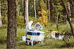 Beekeepers working on field