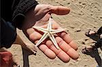 Man Holding a Starfish Seashell