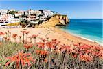 Blooming Aloe Vera Plants and elevated view of Carvoeiro Village and Praia de Carvoeiro, Lagoa, Algarve, Portugal