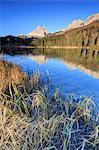 The Three Peaks of Lavaredo and woods reflected in Lake Misurina, Auronzo of Cadore, Dolomites, Veneto, Italy, Europe