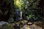 Waterfall at Lamington National Park, Queensland, Australia, Pacific