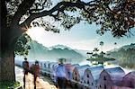 Kandy Lake, Kandy, Sri Lanka, Asia