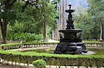 The Botanical Gardens, Rio de Janeiro, Brazil, South America
