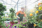 Male gardener working in greenhouse, Augsburg, Bavaria, Germany