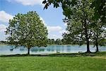 Park around lake, Lake Karlsfeld, Munich, Bavaria, Germany