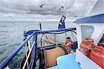 Fisherman bringing in trawl net on trawler