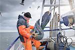 Fisherman preparing net on deck of trawler
