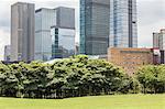 Shenzhen Skyscrapers beside Meadow