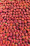 Strawberries in market.