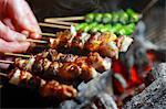 Grilled yakitori skewers (Japan)