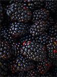 Many Whole Blackberries