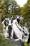 Swallow Falls in autumn, near Betwys-y-Coed, on River Llugwy, Conwy, Wales, United Kingdom, Europe