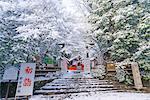 Nonomiya-jinja Shrine in snow, Sagano, Kyoto, Japan