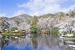 Kyoyo-chi Pond in snow, Ryoan-ji Temple, Kyoto, Japan