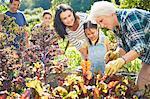 Multi-generation family in vegetable garden